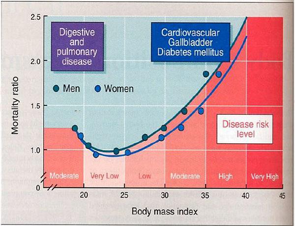 Grafico 1: Correlazione BMI e rischio di mortalità. Bray, 1992