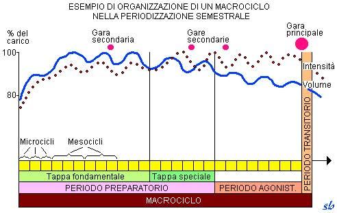 Esempio di organizzazione di un macrociclo nella periodizzazione semestrale