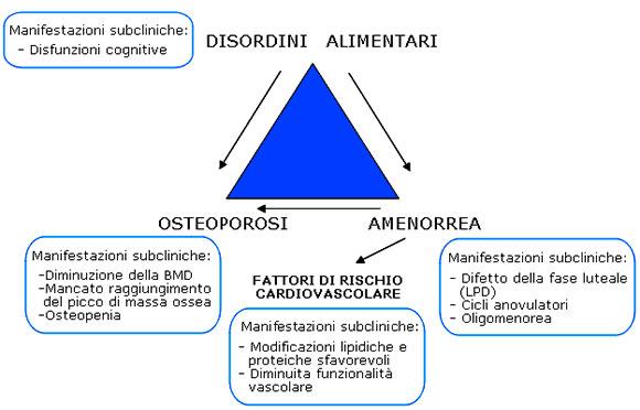 schematizzazione della triade dell'atleta