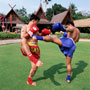Kick boxing: le distanze