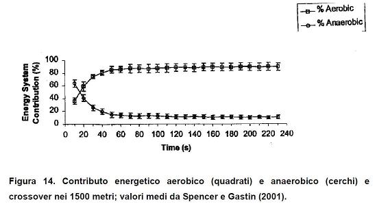 contributo_energetico_anaerobico_1
