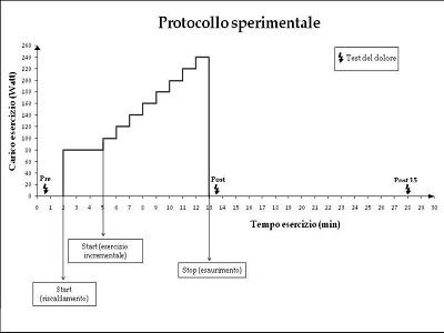 Protocollo sperimentale. Figura 2.3