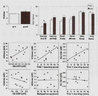 aumento del CBV del giro dentato indotto dall'esercizio in correlazione con capacità aerobica e cognizione