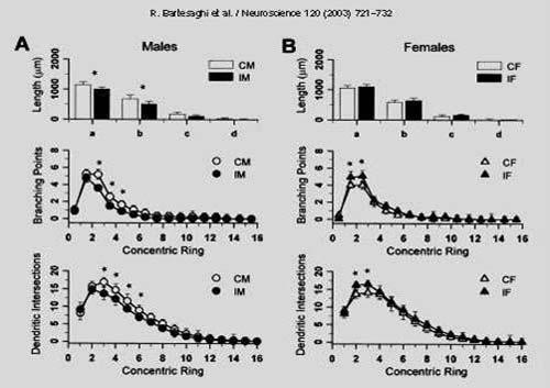 effetti dell'ambiente sulle cellule stellate