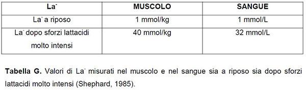 latticidi