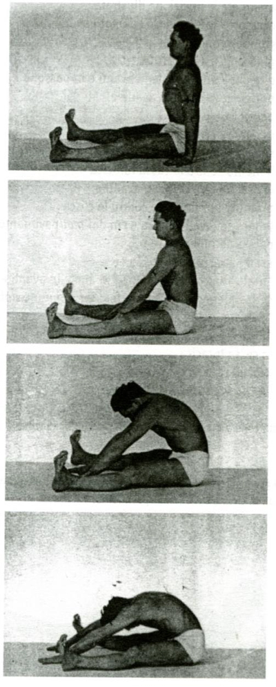 The Spine Stretch